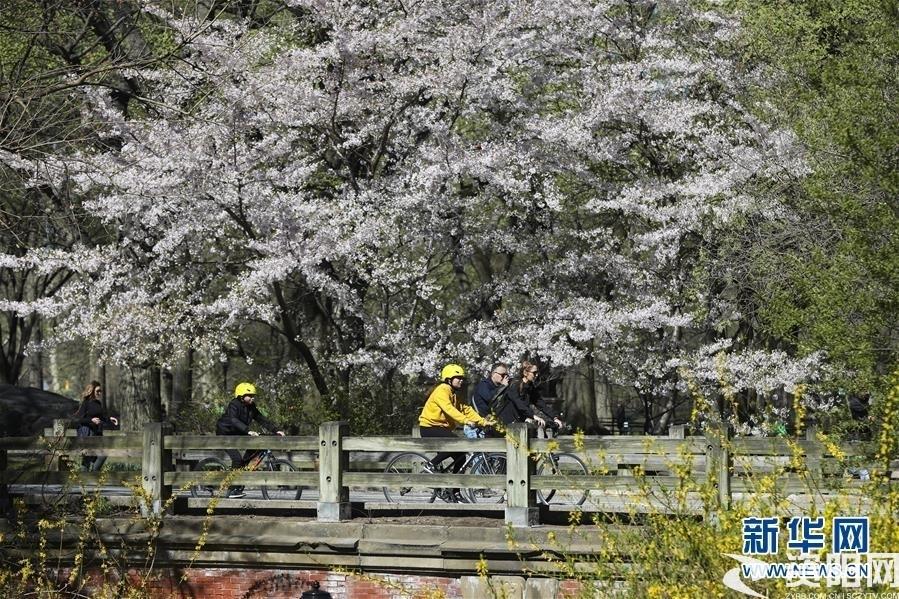 (国际·北京世园会)(13)世界园林巡礼——纽约的城市花园:中央公园