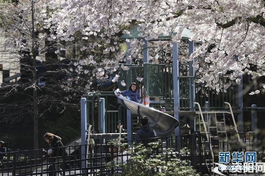 (国际·北京世园会)(11)世界园林巡礼——纽约的城市花园:中央公园