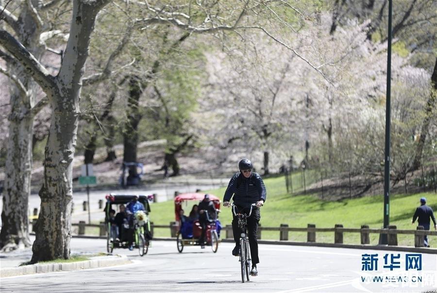 (国际·北京世园会)(5)世界园林巡礼——纽约的城市花园:中央公园
