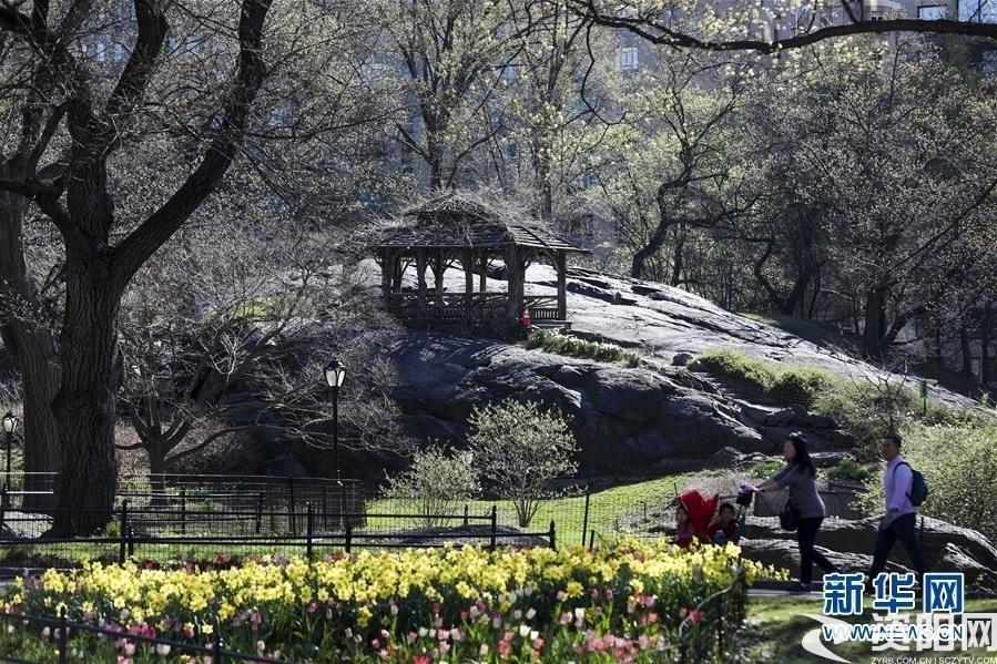 (国际·北京世园会)(8)世界园林巡礼——纽约的城市花园:中央公园