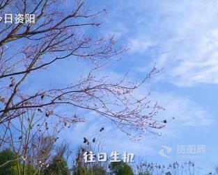 【微視頻】寒冬已去·春風(feng)拂來