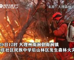 雲(yun)南省大理州發生森林(lin)火災 1400余人投(tou)入撲救