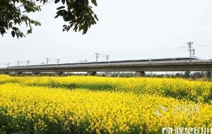 【图集】开往春天的列车 满载希望前行