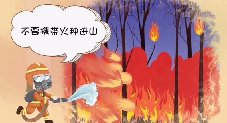 """清明请记牢!森林防火""""十不要"""""""