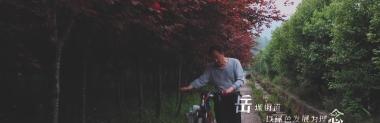 今看资阳·春||安岳岳城