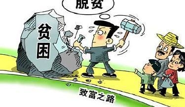 """杨世奇:扎根基层 当好脱贫攻坚""""领头羊"""""""