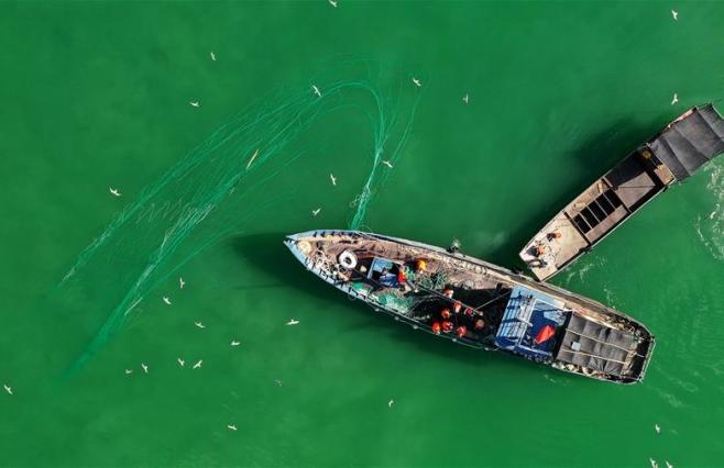 新疆博斯腾湖:渔民秋捕忙