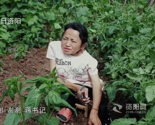 资阳扶贫印记展播(九) 纪录片《板凳姑娘》下集