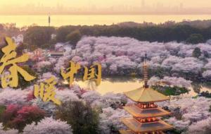 微视频   春暖中国