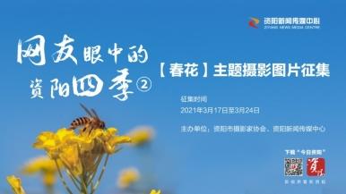 """【网友眼中的资阳四季】②""""晒春花""""与今日资阳网友共赏春景~"""